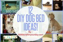 ♡ DIY for Our Furry Friends ♡