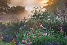 magiska trädgårdar. / hur min trädgård ska se ut.