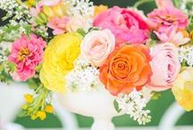 Colorful Weddings / Colorful ideas for wedding decoration, invitations, bouquets, favors, centerpieces, etc