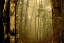 Realm of Mythology & Fantasy✠ / mermaids, faeries, gnomes, unicorn, pegasus,