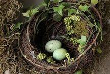Spring Fling❁✾❁ / SPRING, SPRING FLOWERS, EASTER,EASTER EGGS,