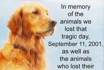 Never Forget❤✈ / september 11th, 911, world trade center, terrorists,