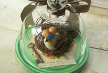 Cloches, Domes and Terrariums / glass cloches, vintage cloches, wire cloches, antique cloches, easter cloche, christmas cloche, winter cloche, terrarium cloche,  / by †☠Mystical Enchantments☠†