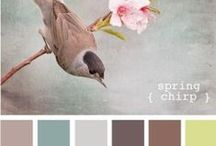 Colors for Bedroom / by Sue Trask
