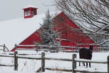 Photography Of New England / Nature photography  Facebook.Com/PhotographyOfNewEngland