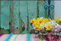 Easter narcissi / Easter themed narcissi arrangements