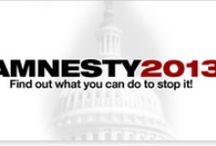 No Amnesty 2013 / Help us put a stop to this legislation crafted by special interests TODAY. Use the tools and information provided to FAIR to stop the 2013 Amnesty push.