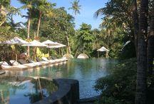 Bali 2018☀️