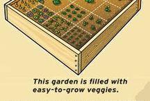 Gardening Helpful hints