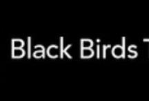 Blog:  Black Birds Three
