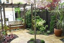 Gardening & Landscaping Oasis / Get inspired with landscaping ideas and garden designs.