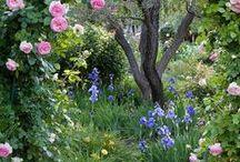 Trädgårdsinspiration / Ideer till den lilla och stora trädgården