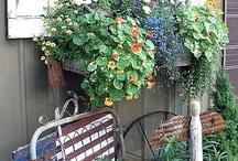 ~*Yard, Garden, Landscaping*~ / by kriss falk