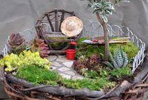 Gardens / by Mary Anne Baldwin