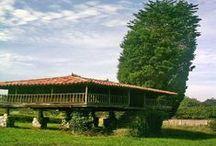 Escapadas a Asturias / Asturias es una tierra con una belleza singular, con una cultura propia, gastronomía que abarca desde el pescado y marisco de su litoral, hasta sus afamados quesos, y platos del interior.