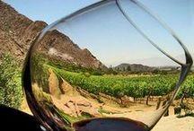 Escapadas a La Rioja / Visita las bodegas más famosas y conocidas del vino español, La Rioja es el destino ideal para realizar tu escapada enoturística. Ven a descubrir toda la belleza de La Rioja, una tierra vinícola