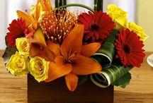 Arreglos florales/Centerpieces / by Anna Maria Ligia Desloovere