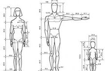 Drawing Tutorials - Basic Body & Head Proportions / Basic Body, Face & Head Proportions