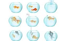 Goldfish Vector Pack / You have good luck, you found the Goldfish. We mean the Goldfish vector pack with 11, 100% original, hand drawn and royalty free vector files. Now is time to make a wish for your design.