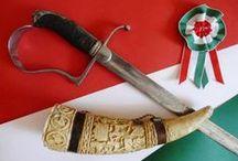 We are the Hungarians ...mi vagyunk a Magyarok / Mi vagyunk a magyarok - a mag népe -, én is magyar vagyok, mint sokan még a világban olyan 10 és 20 millió közöttt. Hogy kik vagyunk, és milyenek vagyunk, milyen a művészetünk, a kultúránk, kik tettek minket ilyenné, mi a történetünk arról mesélnek ezek a képek. Ilyenek vagyunk...   Kultúránk, nyelvünk olyan kincs aminek sokan nem is vagyunk tudatában. Ez kincs ami van, ami velünk él, eleven és létezik közel 2000 éve vagy kitudja mióta...