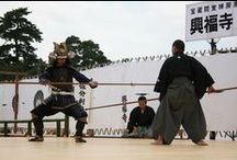 Fighting Arts - The Japanese Fighting Arts: koryu schools / The Japanese Fighting Arts: koryu or samurai schools / http://www.koryu.com/koryu.html