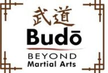 Fighting Arts - The Japanese Fighting Arts: BUDO Arts or schools / BUDO Arts or schools: aikido; battodo; iaido; judo; karatedo;  kendo; kyudo;