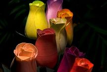 FLOWERS / by Valencia Cureton