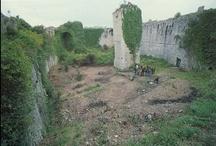 La Rocca nei secoli