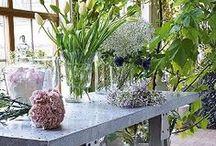 Blommor & tillbehör