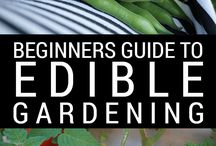 Growing Home Community / grow, raise, harvest, cook, preserve, create, enjoy! dirt to dinner, grow your own food, eat from the garden, preserve the harvest, organic gardening solutions, pest control, growing home
