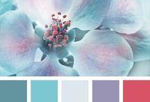 Color sets