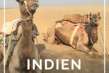 Reisen Indien / Routenvorschläge und Ideen für deinen ersten oder nächsten Trip nach Indien. Rajasthan, Delhi