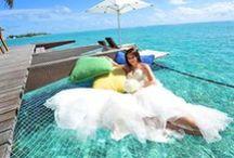MALDIVES&TAHITI WEDDING / EARTH COLORSモルディブ&タヒチウェディングのボード