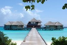 Magical Maldives / The Maldives conjures images of pperfect paradise islands with white sands and turquoise oceans to set you on an adventure of pure relaxation and paradise. Travel to Maldives for and esclusive escape for adults.  To learn more about this destination and hotels visit http://www.puredestinations.co.uk/destinations/indian-ocean/maldives/  Or call 0121 446 4932