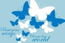 Butterflies and beauty
