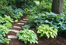 "Gardening Ideas / ""My garden is my most beautiful masterpiece."" -Claude Monet"