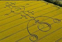 Crop Circles / Crop Circles