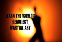 Mantis Kung Fu / An online Mantis Kung Fu training system for anyone anywhere in the world. Real lessons from a real master that really work.    www.mantiskungfu.com.au  www.learnkungfuonline.com.au