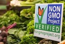 Say No to GMOs / In celebration of Non-GMO month, KWF is collecting articles, videos and information on GMOs, the Non-GMO Project and what you can do to keep your diet GMO-free. KWF does NOT own the content that is displayed on this board.
