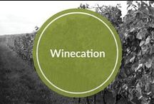 Winecation / These are amazing places that I would love to sit and drink a glass of Fabio Viviani Wines!