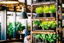 Think Green / Die Welt verändert sich stetig. Insbesondere innerhalb von Städten findet weltweit eine nachhaltige Transformation urbaner Räume statt, die auf die Verbesserung der Lebensqualität ihrer Bewohner und Besucher zielt. Vertikale Gärten sind das gesuchte Schlüsselwort.