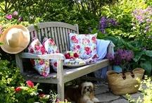 ~*~ Backyards & Flowers ~*~