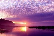~*~ Passionetly Purple ~*~