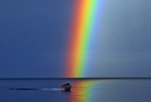 ~*~ Rainbows ~*~