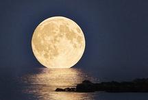 ~*~ Moon Light ~*~