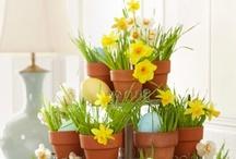 ~*~ Spring ~*~