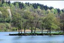 Le parc régional du Morvan