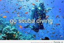 dive scene