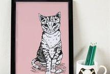 Tally Tabby Cat