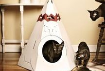 PAWfect Pet Homes